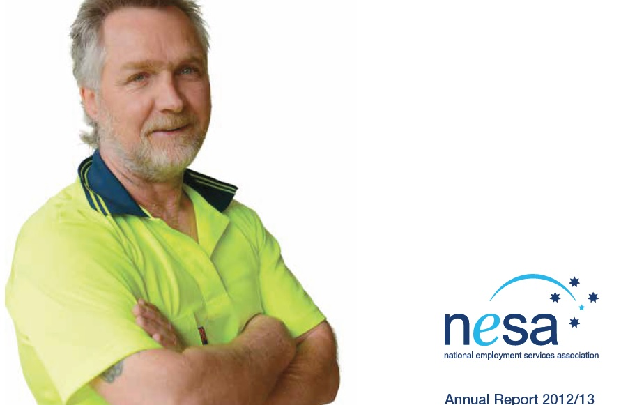 NESA Annual Report 2012/13