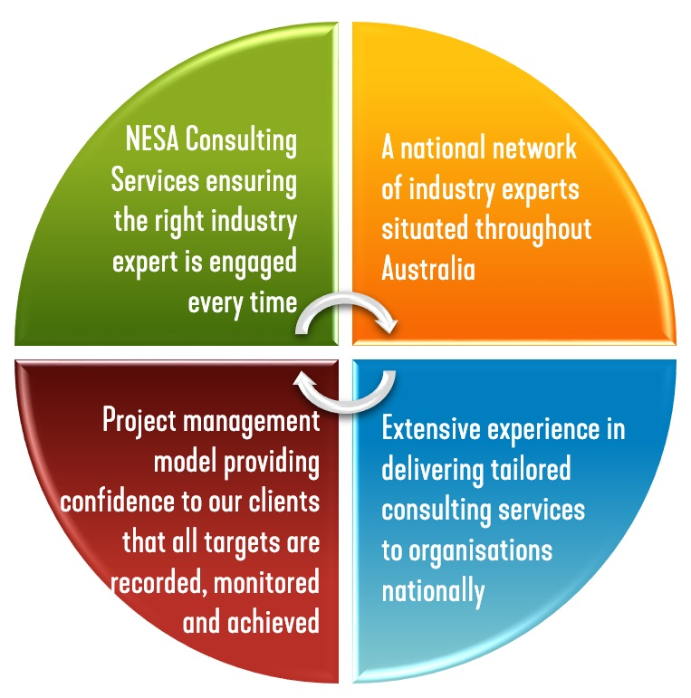 NESA Consulting wheel - NESA Consulting Services