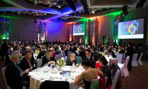 NESA Gala Awards Dinner